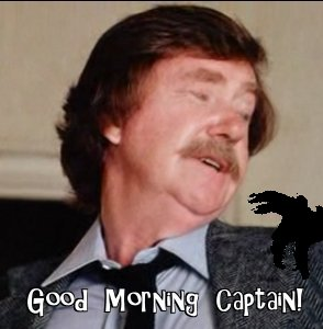 Good morning, Captain